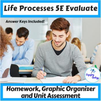 Life Processes 5E Evaluate