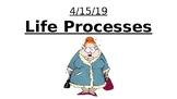 Life Processes - MRS GREN