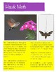 STAAR Ecosystem Review  - Life Science - Vocabulary