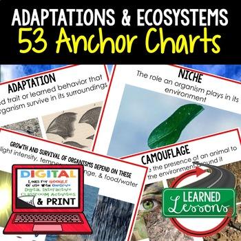 Life Science Adaptations 53 Anchor Charts