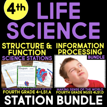 Life Science BUNDLE - Fourth Grade Science Stations