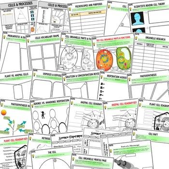 Life Science Cells Activities, Choice Board, Print & Digital, Google