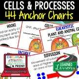 Life Science Cells and Processes Anchor Charts