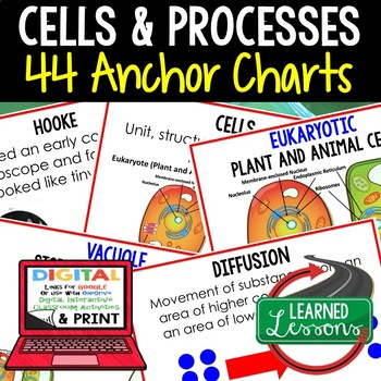 Life Science Cells and Processes 44 Anchor Charts