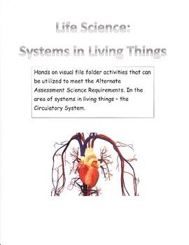 Life Science: Circulatory System
