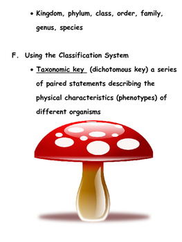 Life Science Kingdoms, Classification, Bacteria & Viruses Outline and Notes