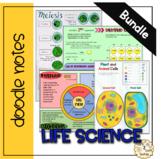 Life Science Doodle Note Bundle