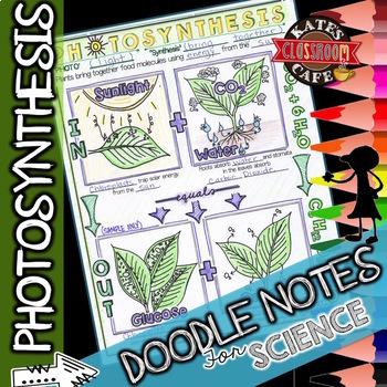 Life Science Doodle Notes Bundle
