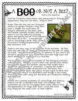 Life Science & ELA Non-Fiction Reading and INB Activities:BEES for CCSS and NGSS