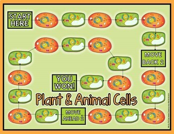 Life Science Games: 5th Grade Science Activities