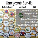 Life Science Honeycomb Pattern Bundle: Room Decor, Word Wa