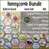 Life Science Honeycomb Pattern Bundle: Room Decor, Word Wa