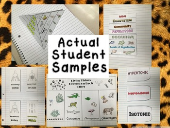 Life Science Interactive Journal Foldables