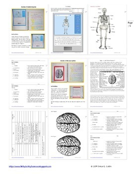 Human Body Science Interactive Notebook - Part 1