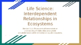 Life Science: Interdependent Relationships in Ecosystems