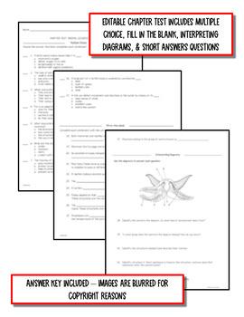 Animal Diversity: Invertebrates Life Science Notes, PowerPoint & Test~ EDITABLE