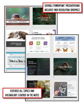 Animal Diversity: Invertebrates Life Science Notes, PowerPoint & Test~ EDITABLE