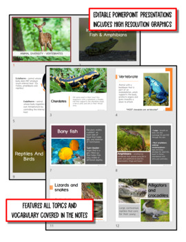 Animal Diversity: Vertebrates - Life Science Notes, PowerPoint & Test ~ EDITABLE