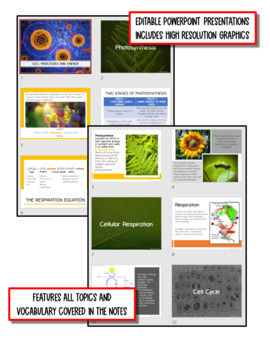 Cell Processes & Energy: Life Science Notes, PowerPoint and Test ~ EDITABLE