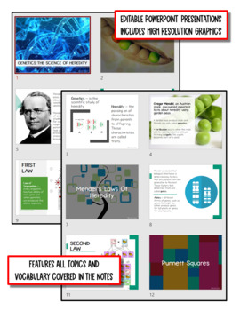 Genetics: Study of Heredity: Life Science Notes, PowerPoint and Test ~ EDITABLE