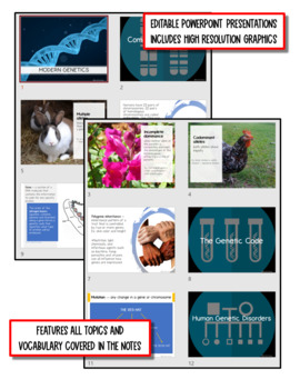 Modern Genetics: Life Science Notes, PowerPoint and Test ~ EDITABLE