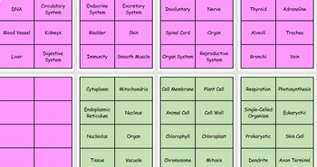 Life Science Pictography Review Game