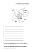 Life Science Plant Test