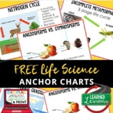 Life Science Anchor Charts, Life Science Posters, ELL Stra