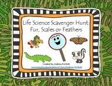 Life Science Scavenger Hunt- Fur, Scales, or Fins