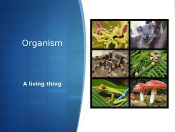 Life Science Vocabulary Classifying Animals and Plants