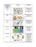 Life Science Vocabulary English/Spanish - Grade 6