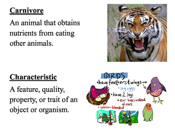 Life Science Vocabulary Posters