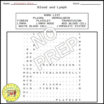 Blood and Lymph Word Search