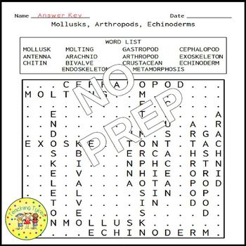 Mollusks Arthropods Echinoderms Word Search
