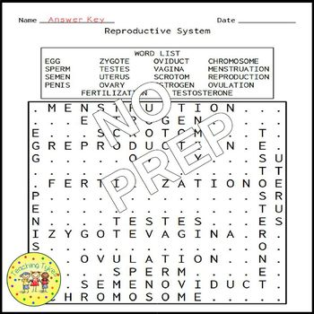 Reproductive System Word Search