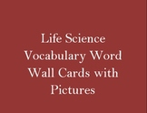 Life Science Word Wall Vocabulary