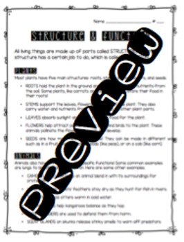 Life Science Worksheet Bundle