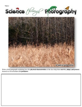 Life Science Writing Prompts using Photographs