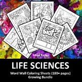 Life Sciences Posters 180+ Vocabulary Terms: Biology, Anat