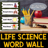 Life Sciences Word Wall Cards