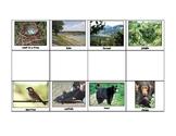 Special Education: Animal Habitats - Match