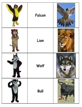 Special Education: Match Animals to School Mascots