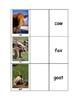 Life Skills: Animal Vocabulary