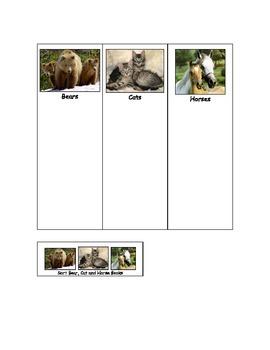 Life Skills: Bears, Cats or Horses
