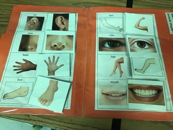 Life Skills- Body Part Picture Match (generalizing) file folder