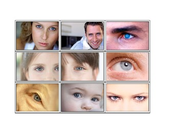 Life Skills: Brown Eyes or Blue Eyes