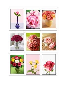 Life Skills: Carnations vs. Roses