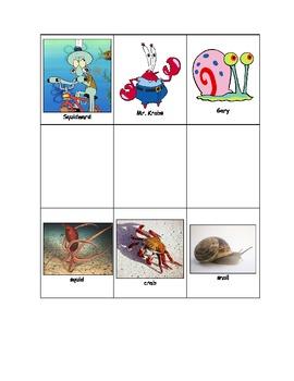 Life Skills: Cartoons and. the Real Thing