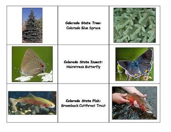 Special Education: Colorado State Symbols Match