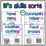 Life Skills Independent Work Sorts (sped/autism)